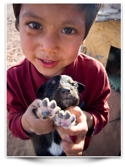 Humane education Boy in ciudad Juares holding a dog